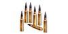 Munitions armes de tir