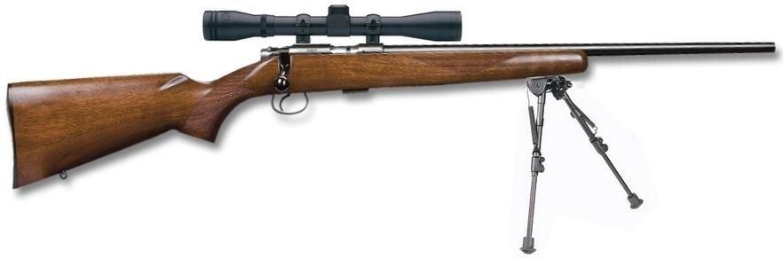 Carabine 22lr cz 455 american avec lunette bauer 3 9x40 et for Arme defense maison