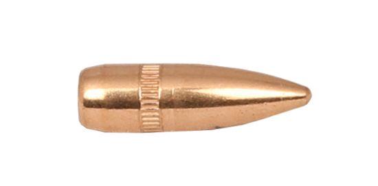 Ogives CAM PRO cal.223 Rem 3,56g/55 grains Ø.224 BT-FMJ