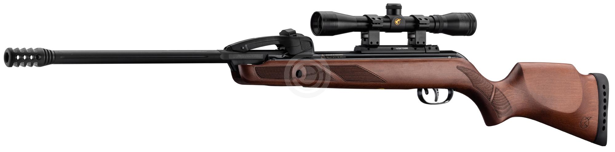 Carabine GAMO REPLAY 10 FAST SHOT IGT Combo 4x32 (chargeur 10 coups)